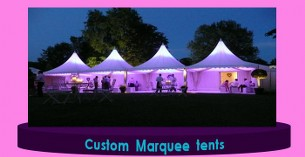 Wellington event Family Tents