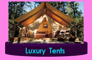 Luxury Canvas Camping Tents Umhlanga